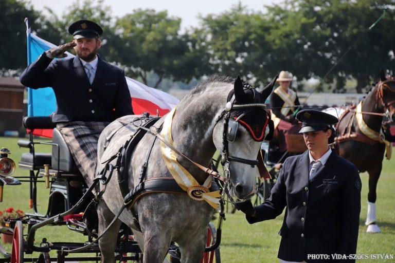 MS mladých koní 2020 v Mezőhegyes zrušeno