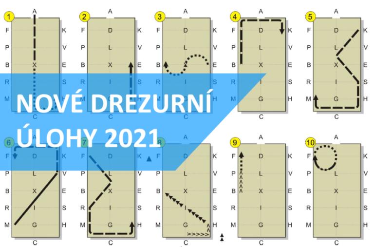 Aktualizace drezurní úlohy CAI 2* HP1 (2021)