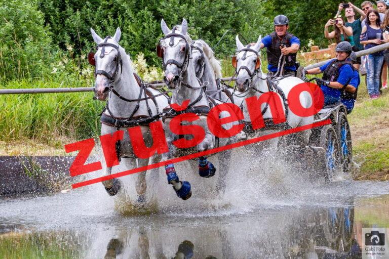 CAI3* Kladruvy nad Labem 2021 – ZRUŠENO